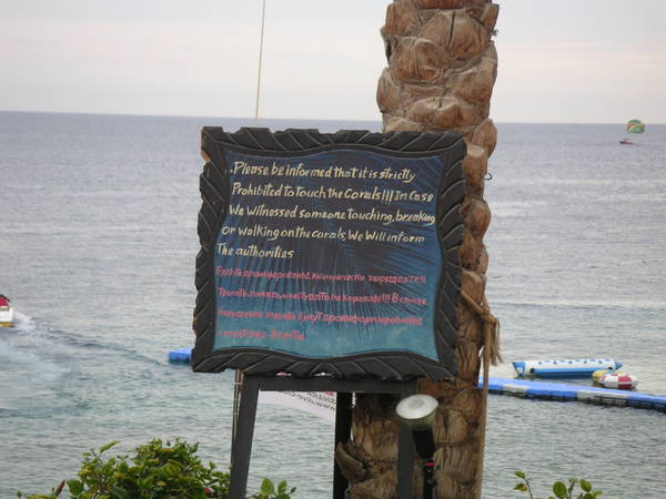 Sharks Bay Rules